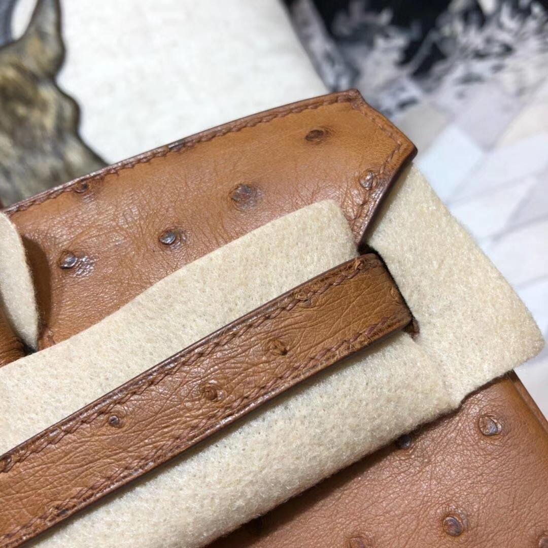 爱马仕铂金包价格 Hermes Birkin25CM 土黄色顶级鸵鸟皮 银扣
