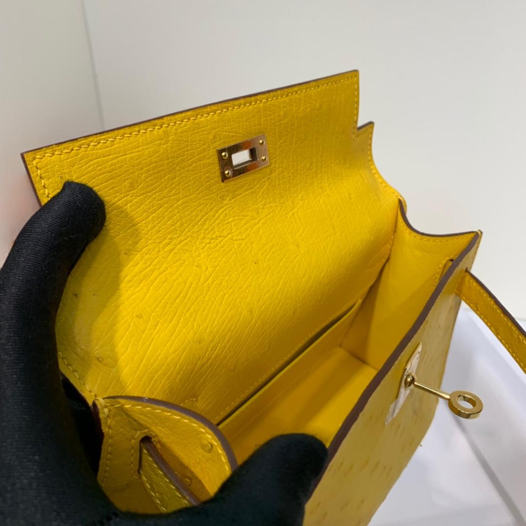 Hermes Minikelly Pochette22CM 爱马仕琥珀黄顶级鸵鸟皮迷你凯莉包 金扣